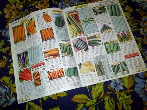 It's sheer coincidence the catalogue fell open to carrots and cucumbers.