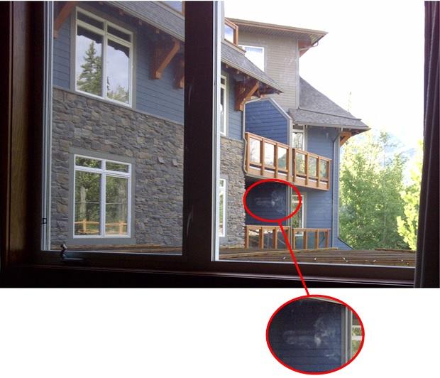 dick window