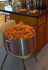 Yes, that is a 10-gallon pot full of carrots.